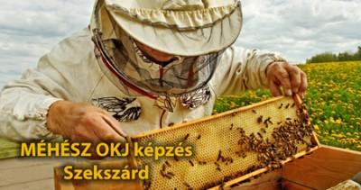 Méhész OKJ Szekszárd