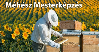 Méhész Mesterképzés Kaposvár